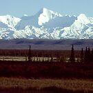 Alaska Range - Denali National Park - Alaska by Harry Snowden