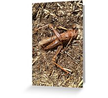 Return to the Earth Greeting Card
