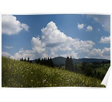 Lush Wildflower Meadow in the Mountains Poster