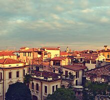 Verona Panorama from the Arena by styles