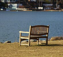 A Bench with a View by Gilda Axelrod