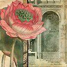 Secret Garden by Aimee Stewart