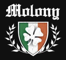 Molony Family Shamrock Crest (vintage distressed) by robotface