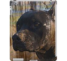 Grunge Staffordshire Terrier Pitbull Pit Bull Photograph iPad Case/Skin