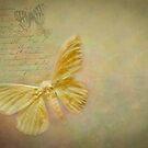 We are Like Butterflies  by Marilyn Cornwell