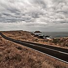 Phillip Island by Eamon Fitzpatrick