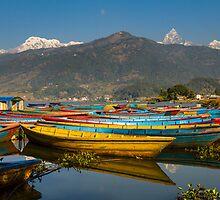 Pokhara Boats by Jamin Walsh