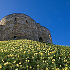 Clifford's Tower by John (Mike)  Dobson