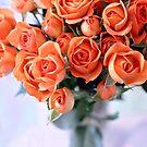 Birthday Roses by AbigailJoy