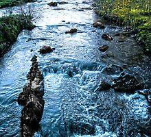 The Stream by Benjamin Pollley
