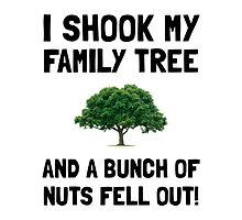 Family Tree Nuts by AmazingMart