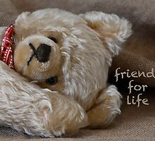 Friends for Life by Betty MacRae