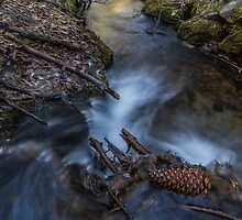 Second Creek - Lake Tahoe by Richard Thelen