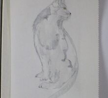 Cat study by kest standley