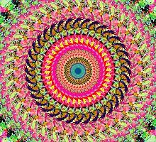 Spinning Wheel of Symmetry by perkinsdesigns