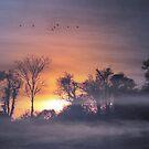 Sunrise  by larry flewers