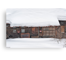 Timeless Thoughts of Winter Entry Canvas Print