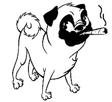 Smokin' Pug by DougieCharles