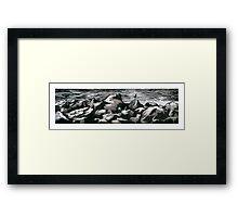 Seagull Shore Framed Print