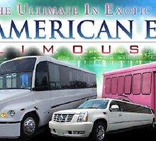 Party limo Bus Service VA by Americaneagle1