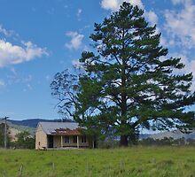 Old School by Liz Worth
