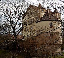 Schloß Hummelstein in Nürnberg by Franz Roth