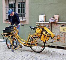 The Mailman by Eileen McVey