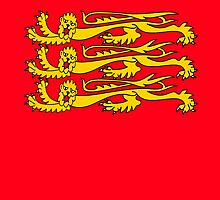 Royal Banner of England; three lions, British by TOM HILL - Designer
