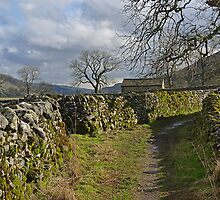 Between Stone Walls by Kat Simmons