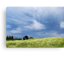 Storm Over Grassy Dunes Canvas Print
