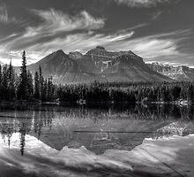Herbert Lake in grey by JamesA1