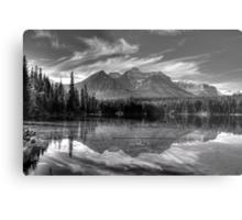 Herbert Lake in grey Metal Print