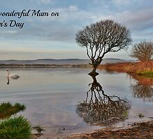 Mother's Day Card - To a wonderful Mum by Paula J James