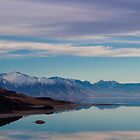 Antelope Island in February  by brotbackgeraet