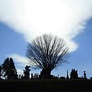 A Holy Rood Silhouette by Cora Wandel