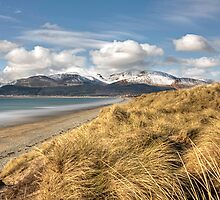 Dundrum bay and the mourne mountains by gomofo1974
