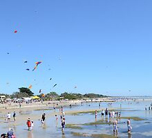 Rosebud Kite Festival - Panoramic by adampower
