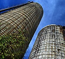Two Silos on the Farm by cclaude