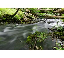 Stream in the Woods Photographic Print