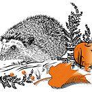 Hedgehog  by SVETLANA ZOLOTAREVA
