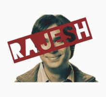 The big bang theorie - Rajesh by FunandCheap