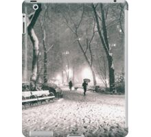 Snow - Madison Square Park - New York City iPad Case/Skin