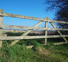 Country gate by Emily Sparkes
