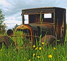 Old Rusted Ford in the Dandelions  by rharrisphotos