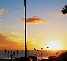 Beautiful Pacific Sunset With Palm Trees by Erik Anderson