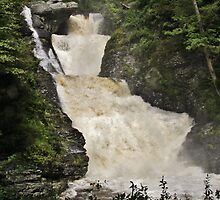 Raymondskill Falls Power Rush by Tim Holmes