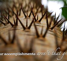 Spikes Close Up — Funny Demotivational Poster With Caption / Typography by Erik Anderson