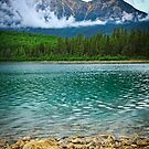 Mountain lake in Jasper National Park by Elena Elisseeva