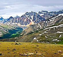 Panorama of Rocky Mountains in Jasper National Park, Canada by Elena Elisseeva