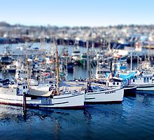 Mini Boats 6 - Tilt Shift by Scott Heffernan